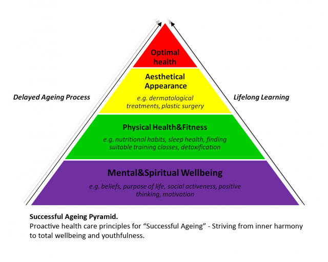 successful ageing pyramid