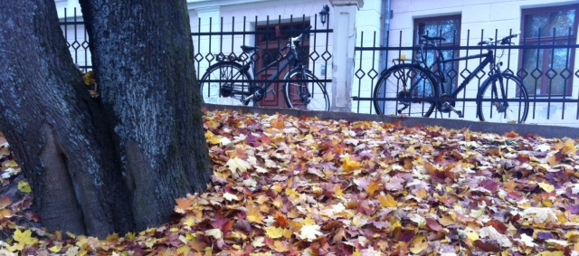 Autumn in Tartu