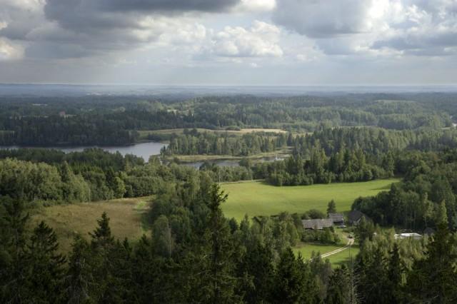 South Estonian view