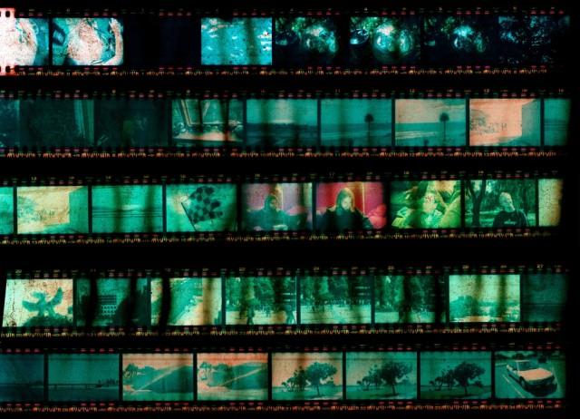a film roll
