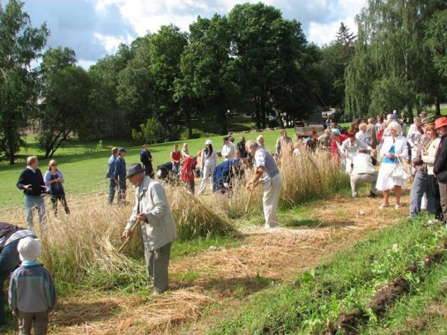 Haymaking in Estonian agricultural Museum. Photo: Visitestonia