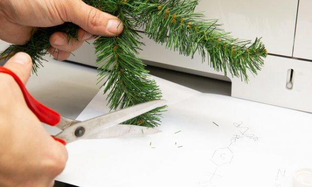 Christmas tree, experiment