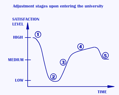 Chart which shows adjustment stages upon entering university.